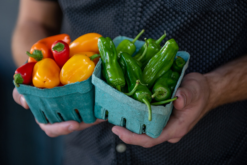 hand-picked-organic-peppers